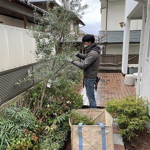 植物のお手入れは茨木山手台店の得意とするところです。