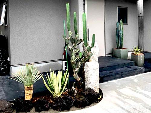 ドライガーデンの坪庭施工事例。阿蘇の溶岩とサボテンを使った粋な演出です。